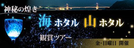 海ホタル観賞ツアー